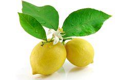 Как в быту можно использовать лимонные листья?