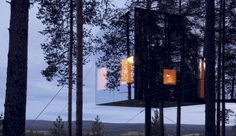 Sleep in the forrest in the wild nature of Lapland...