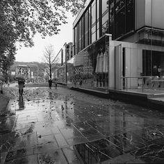 Hasselblad Biogon lens wVoigtlander viewfinder w/Acros Shot at and EV 13 w/tripod. Bilbao, Love Photography, Tripod, Vietnam, Spain, Lens, Shots, Museum, Sevilla Spain