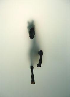 """Saatchi Online Artist Miriam Sweeney; Photography, """"Subversion"""" #art"""