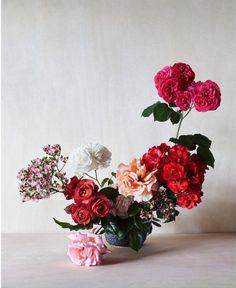 Floral arrangement by Simone Gooch