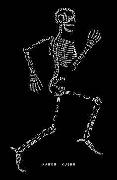 Aaron Kuehn - Skeleton Typogram For my office