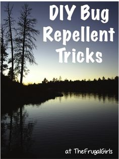 17 DIY Bug and Mosquito Repellent Tricks! ~ from TheFrugalGirls.com ~ keep away those pesky bugs this summer at the lake and on your camping trips with these simple tips! #thefrugalgirls
