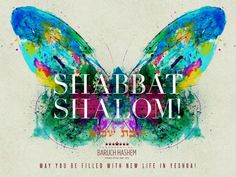 Shabbat shalom--beautiful!