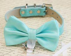 Azul perro pajarita, portador del anillo perro, accesorio de la boda de mascotas, los amantes de mascotas, playa de la boda, boda de perro del collar, propuesta, algunas cosa azul, collar de perro