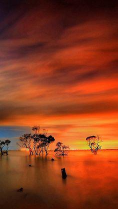 Sunset, Horizon, Fiery Sky