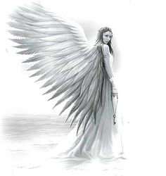 Angel drawing - back piece?