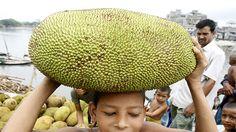 ¿Por qué los pobres en la India no comen esta fruta gigante capaz de alimentar familias enteras?