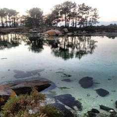 Isla de arosa.        Galicia