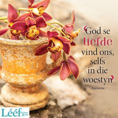Spiritual Quotes, Positive Quotes, Worship Quotes, Afrikaanse Quotes, Heavenly Father, True Words, Flower Power, Life Lessons, Me Quotes