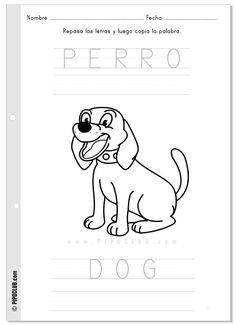 Colorear perro / Dog
