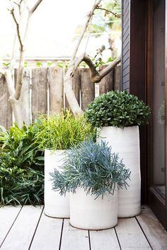 Grouping in threes is a well-known stylist trick. This arrangement has varying heights and different shades of foliage in the plants. The pots themselves are also subtly interesting with their organic ribbed forms. Simple sophistication at its best!