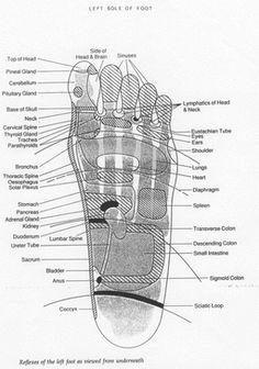 reflexology left foot
