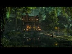 Swamp Sounds at Night - Frogs, Owls, Crickets, Light Rain, Forest Nature Sounds | 3 Hours - YouTube