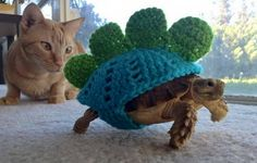 "The Stegatortoise - an unusual take on the ""shell suit"" ... Made by Mossy Tortoise. Hat tip to @ShiraRoars ‪#‎crochet‬ ‪#‎knithacker‬"