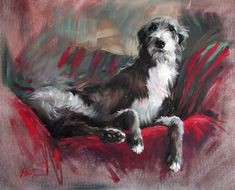 Robbie Limited Edition Lurcher Print by Canine Artist Jacqueline Stanhope