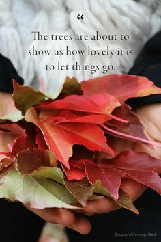 09097b1e45 There is literally nothing in all of nature that blooms all year round. Be  a little more gentle with yourself and when the season comes you can let go.