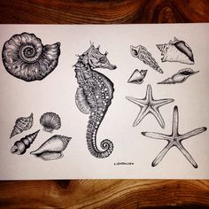 Sealife tattoo flash