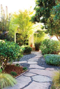 Waterman puts edible food everywhere: a & # Red Fuji & # apple tree, blueberries, strawberries, a & # Meyer's lemon tree and herbs. She also loves water-based succulents and ornamental grasses. Low Water Landscaping, Front Yard Landscaping, Landscaping Ideas, Patio Ideas, Backyard Ideas, Backyard Layout, Garden Ideas, Pavers Ideas, Firepit Ideas
