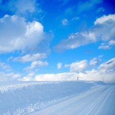 青の世界  北海道の美瑛での