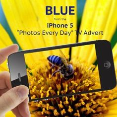 Blue (From the iPhone 5 'Photos Every Day' TV Advert) - Single