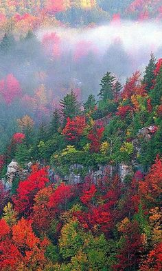 Autumn - Blackwater Canyon, West Virginia
