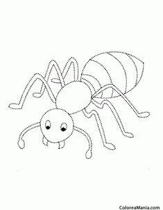 Dibujo de un mosquito imgenes de insectos para colorear