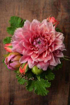 Dahlias and scented geranium