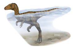 New Evidence Dinosaurs Were Strong Swimmers | #GeologyPage