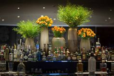 In Water Flowers - London's Favoured Choice for Weekly, Office & Hotel Contract Flowers. Hotel Flower Arrangements, Creative Flower Arrangements, Florist London, Jeff Leatham, Hotel Flowers, Corporate Flowers, Flower Installation, Hotel Decor, Interior Plants