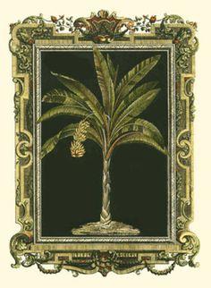 Decorative Framed Palm I