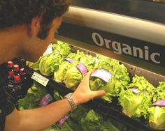 Comportamento - Consumo de alimentos orgânico.  O ser humano vem se conscientizando dos males que os agrotóxicos podem causar ao seu organismo. Logo, as pessoas tenderão a pagar mais caro por um alimento que seja orgânico e evitar possíveis complicações futuras.