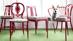 cadeiras vermelhas