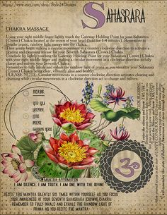 The Seventh Chakra (Sahasrara / Crown Chakra / thousand-petalled lotus) - My Book of Shadows - Livres Pagan Witch, Wiccan, Magick, Witchcraft, 3 Chakra, Crown Chakra, Chakra Healing, Chakra Meditation, Meditation Music