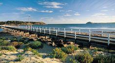 15th April - Victor Harbor