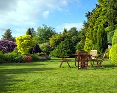 Lawn care in spring  Gardening expert Martyn Cox on how to restore your lawn to verdant loveliness after winter.  http://www.saga.co.uk/lifestyle/gardening/masterclass/spring-lawn-care.aspx