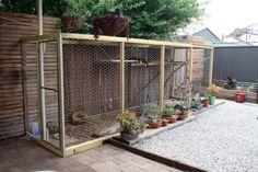 Cat Enclosures for Sale | sarah bell smith: Worlds best cat enclosure