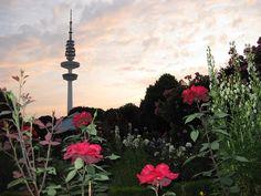 Bildergalerie: Parksee Planten un Blomen
