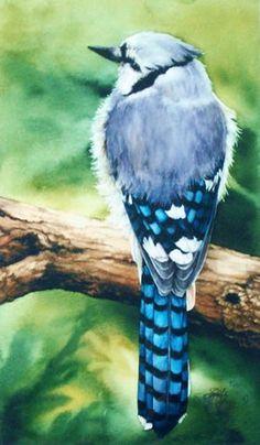 Blue Jay  Intrepid by IrisNorwood on Etsy, $60.00