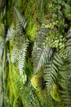 ✿✿✿ Beispiele für horizontale Begrünung von Wänden mit Pflanzen und Moosen. Kunden wie BMW, P&G und ZDF. 100% Natur ✓ 0% Folgekosten ✓ 0% Pflege ✿✿✿