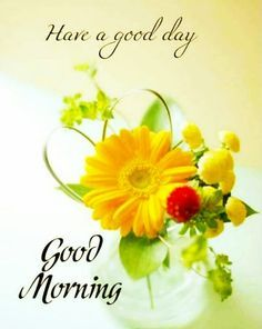 Good Morning Friends Images, Latest Good Morning Images, Happy Good Morning Quotes, Good Morning Beautiful Flowers, Good Morning Beautiful Pictures, Good Morning Roses, Good Morning Images Flowers, Good Morning Cards, Good Morning Picture