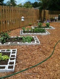 Vegetable Garden Layout Home Harvests Vegetable Garden Design Back Gardens, Outdoor Gardens, Indoor Garden, Cinder Block Garden, Garden Ideas With Cinder Blocks, Cinder Block Ideas, Garden Types, Raised Garden Beds, Raised Beds