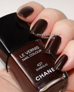 Chanel Diabolic 427 Noirs Obscurs collection fall 2009 swatches