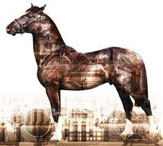 Equines by Catherine McIntyre, via Behance All Themes, Illustration Art, Horses, Donkeys, Photography Ideas, Artist, Brain, Behance, Animals