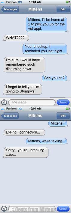 NEW daily Texts from Mittens: The Lost Connection Edition