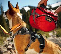 Ruffwear Dog Packs – http://thegadgetflow.com/portfolio/ruffwear-dog-packs-130/