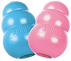 Wondering what to stuff inside of your dog's Kong toy? Here's a list of the best Kong recipes that have worked well for other dog owners. These dog recipes make delicious treats that you can stuff inside a Kong toy.