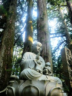 The Bodhisattva Vow (attributed to Nagarjuna):  'May the precious Thought of Enlightenment Be born in me if I have not already given birth to it.  Having been born, may it never wane, But always become greater.'  ~  Ksitigarbha and the mystical light of Koyasan.
