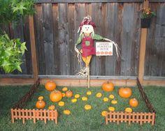 Pumpkin Patch 1st Birthday - love the fabric pumpkin pillows