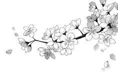 Flowers Black And White Illustration Anime Art 62 Ideas For 2019 Manga Girl, Manga Anime, Anime Art, Nature Sketch, Black And White Illustration, Manga Drawing, Flower Tattoos, Japanese Art, Body Art Tattoos